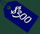 300 gift voucher