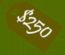 250 usd gift voucher